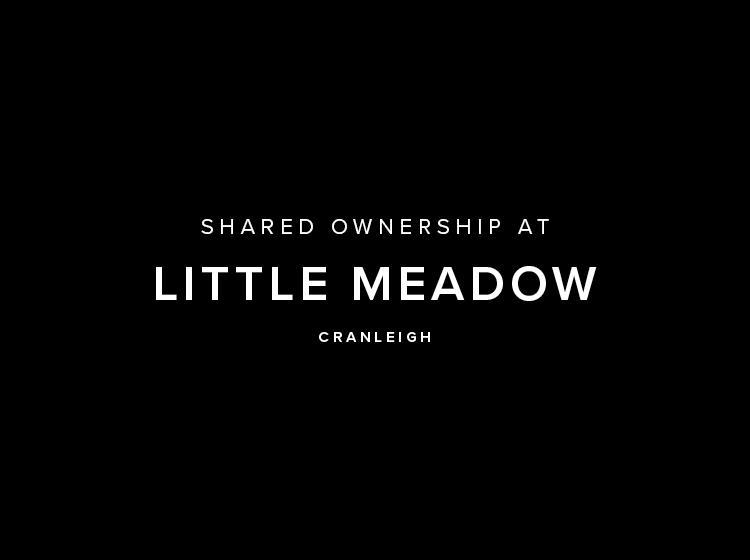 20268B-Trevethan Meadows_square_v1b c.jpg